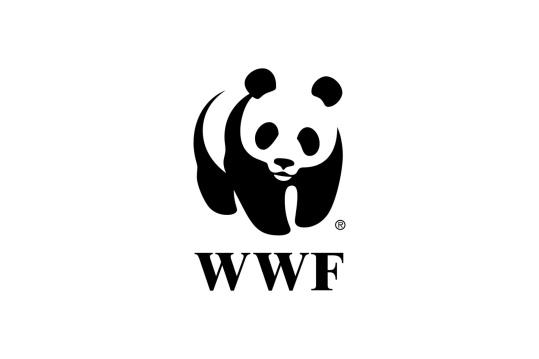 Image result for WWF LOGO