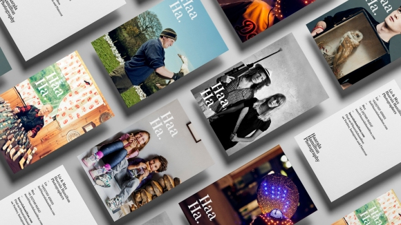 Haarala Hamilton brand marketing materials