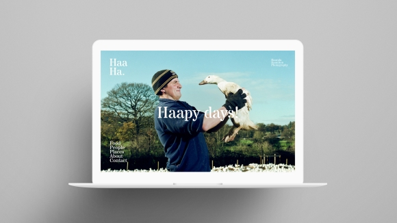 Haarala Hamilton web design by Lantern